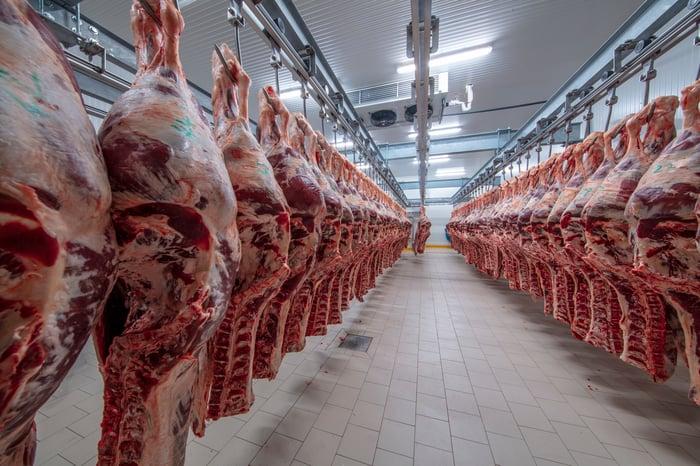 Beef hanging in an industrial freezer