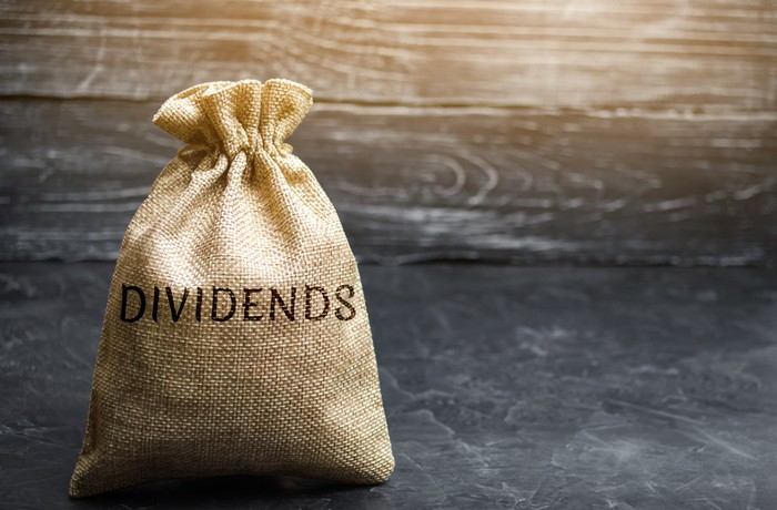 """A canvas bag labeled as """"dividends""""."""