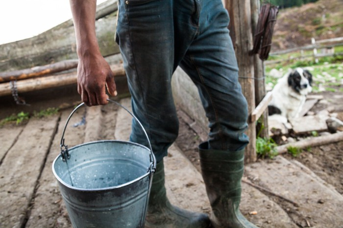 A rancher in jeans and boots carrying a metal bucket