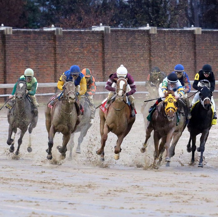 A horse race at Churchill Downs.