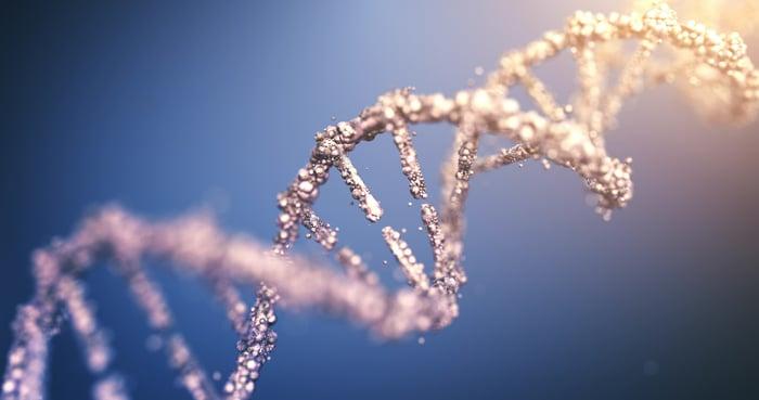 A closeup picture of a DNA strand.