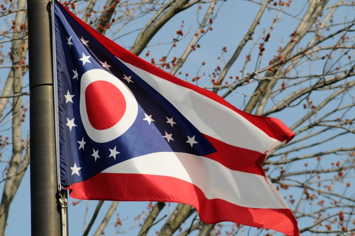 Ohio state flag in front of trees.