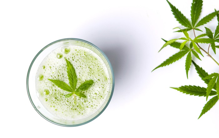 Glass full of a beverage with a cannabis leaf floating on top and cannabis leaves near the glass