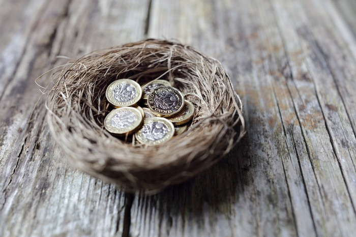 "Coins in a ""nest egg."""