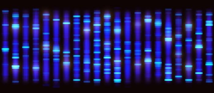 Gel of genetic testing