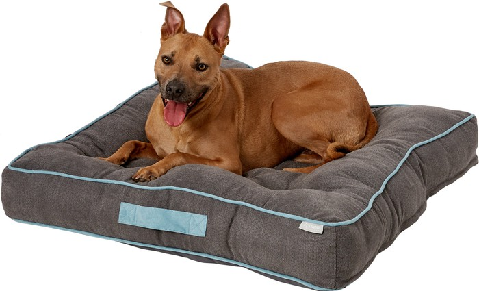 A dog on a dog bed