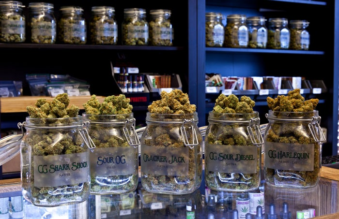 Multiple clear jars sitting atop a dispensary counter that are packed with unique strains of cannabis.
