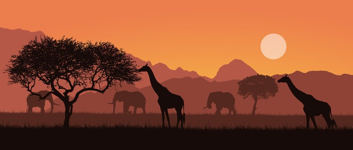 Safari landscape with elephants and giraffes silhouetted