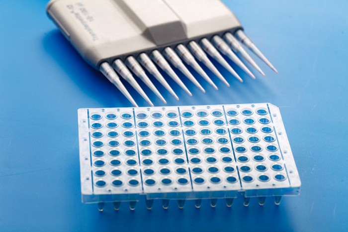 A 96-well plate such as those used in biotech labs.