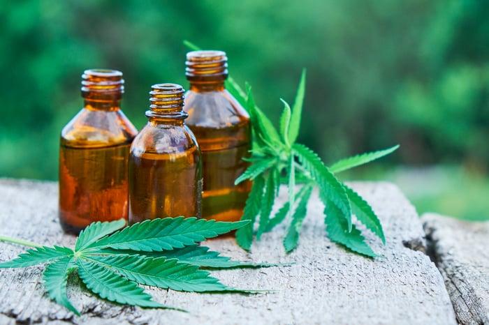 CBD bottles next to cannabis leaves.