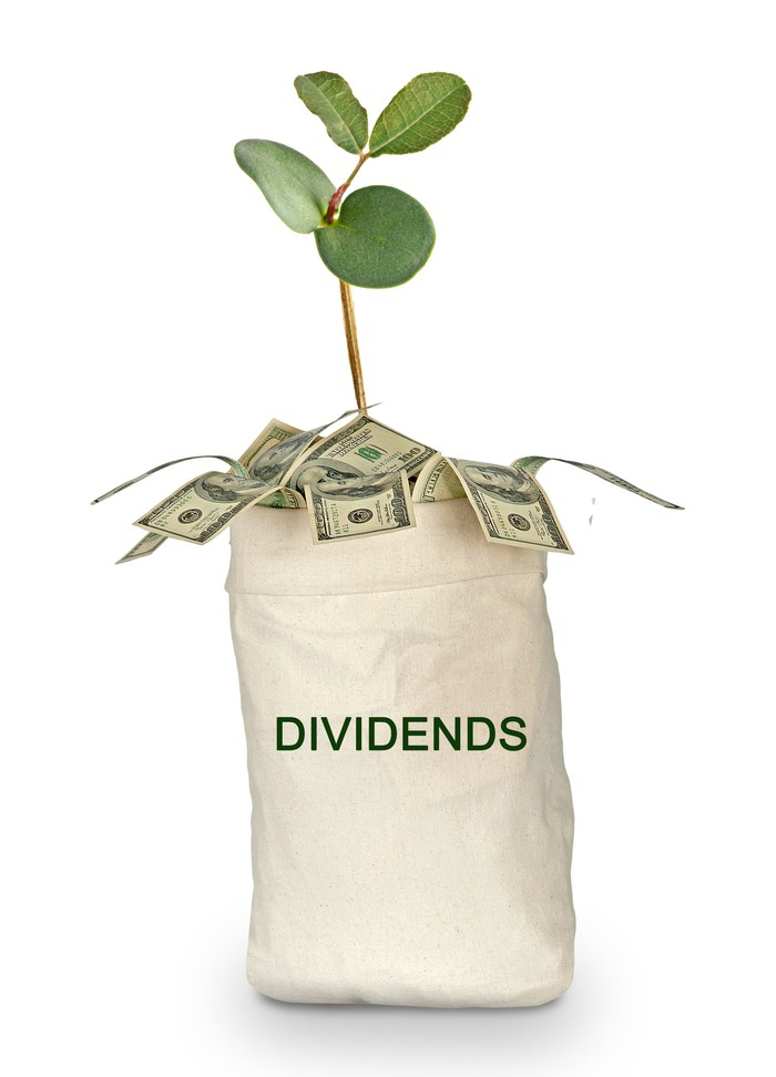 """A cloth bag labeled """"dividends"""" with a small plant and a bunch of money """"growing"""" out of it"""