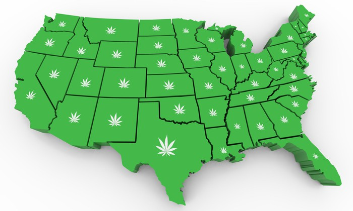 Green map of continental U.S. with cannabis leaf images on each state