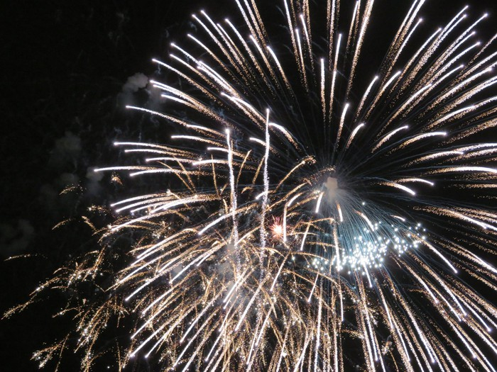 Fireworks in the night sky at Disneyland.