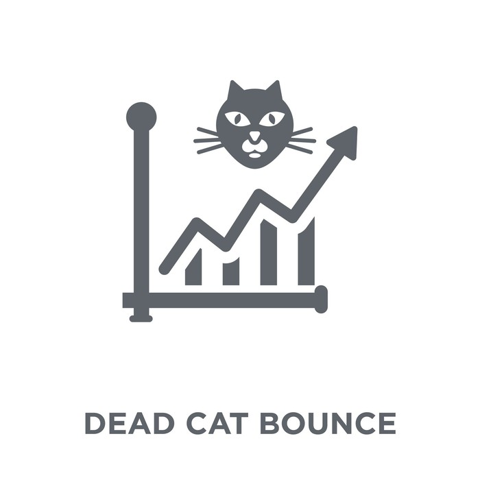 Rising stock chart with a cat head pictured reads DEAD CAT BOUNCE
