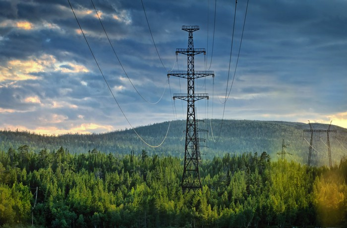 Electricity transmission lines through evergreen forest