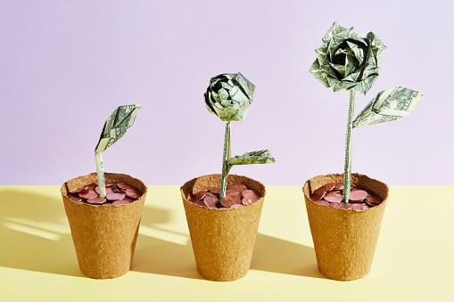 Three flowers made of dollar bills in a row