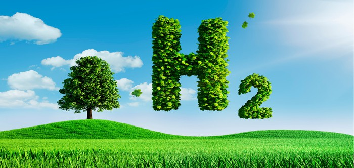 Composed of green leaves, the chemical symbol of hydrogen floats above a green field.