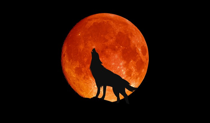 Wolf howling in front of a big red moon