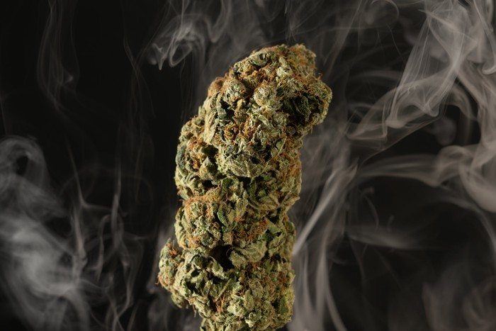 A cannabis bud with smoke wafting from it.