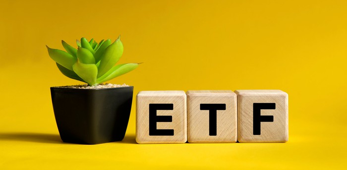 Three blocks with the letters E T and F next to a small plant.