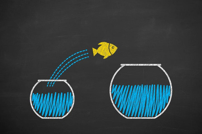 A fish jumping from a small fishbowl to a larger one.