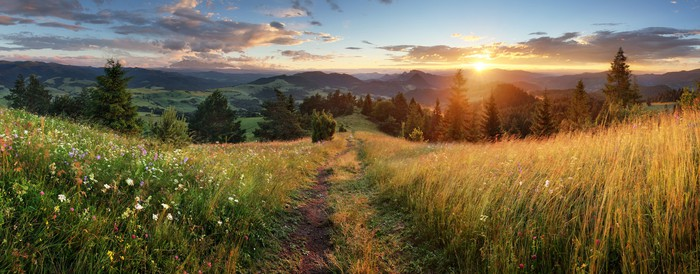 Summer panoramic landscape in mountains