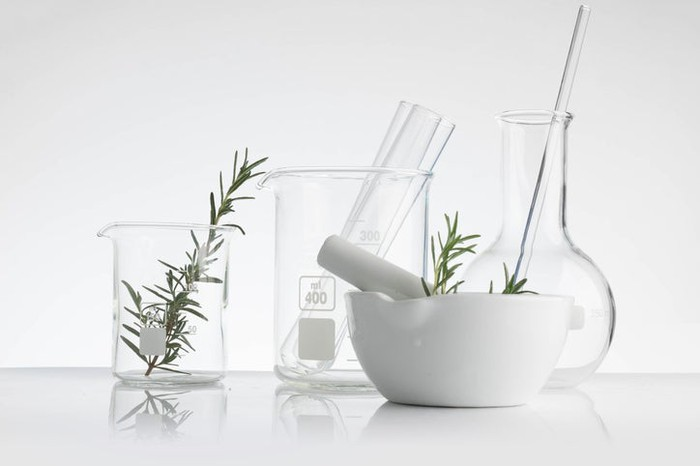 Lab beakers and a pestle with a plant inside.