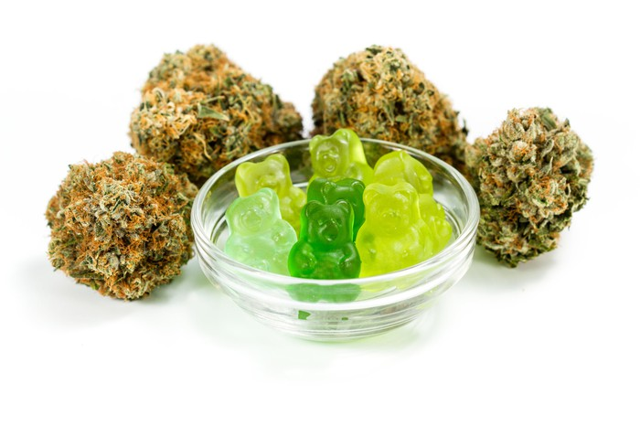 Cannabis buds and gummy candy.