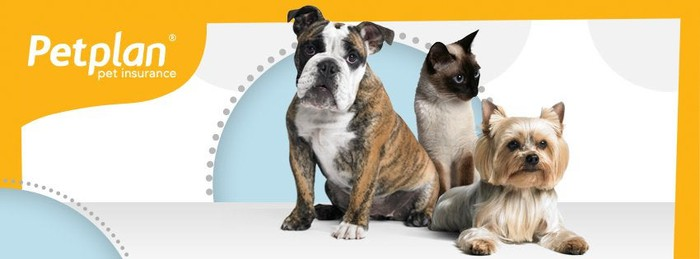 PetPlan logo with a cat and 2 dogs