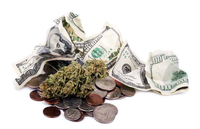 Crumpled hundred-dollar bills and loose change next to a dried marijuana plant