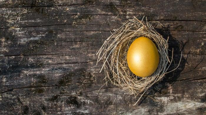 golden egg in nest lying on wooden table