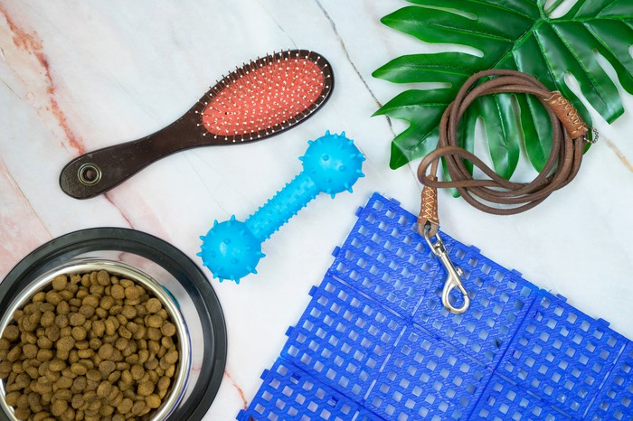 Various pet supplies, including a bowl filled with dry food, a brush, and a leash.