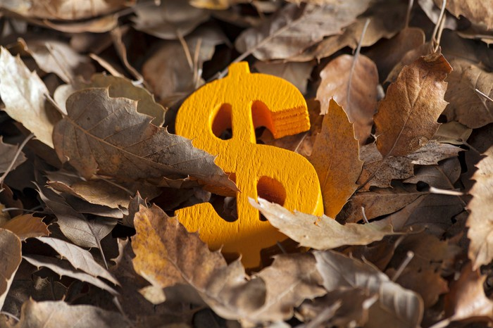 A dollar sign in a pile of leaves.