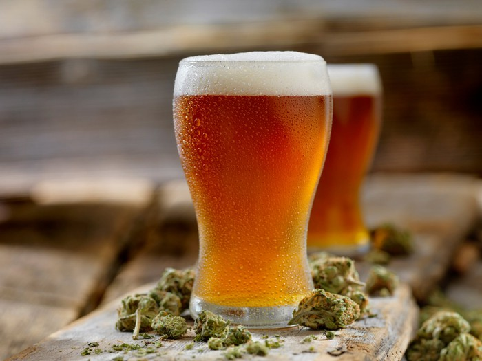 Glasses of beer surrounded by cannabis buds