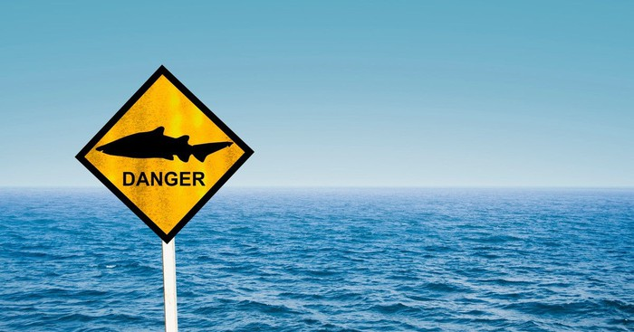"""Road sign marked """"danger"""" with a shark image on it, and sea behind."""