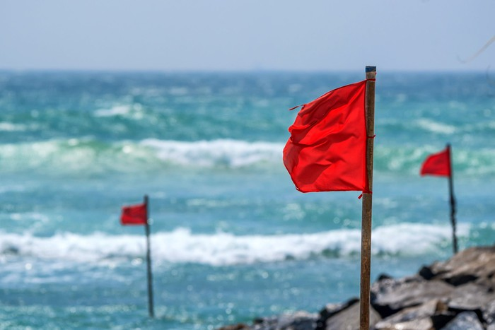 Red flags planted on a beach with ocean behind.