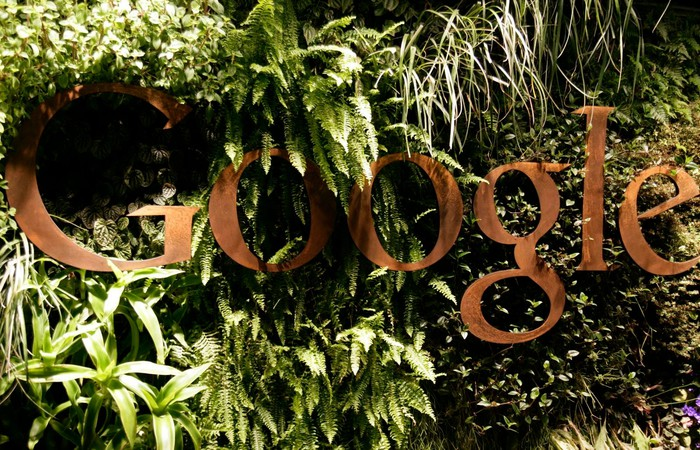 The reception area at the Google office in Sydney, Australia full of plants surrounding the Google logo.