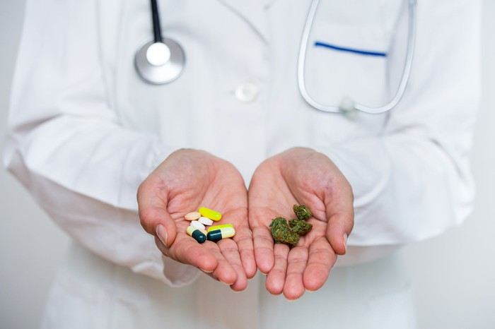 Doctor holding pills in one hand and marijuana buds in the other