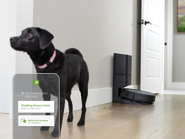 Roomba robotic vacuum cleaner with black dog in the room