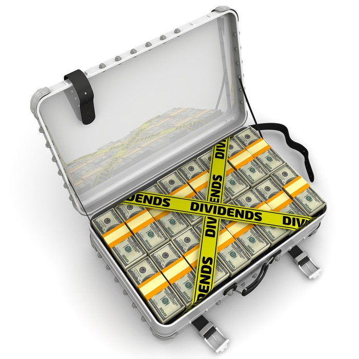 Suitcase full of cash with the word dividends across it.