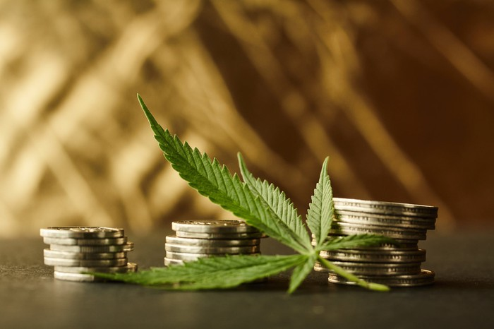 Marijuana leaf and stack of currency coins.