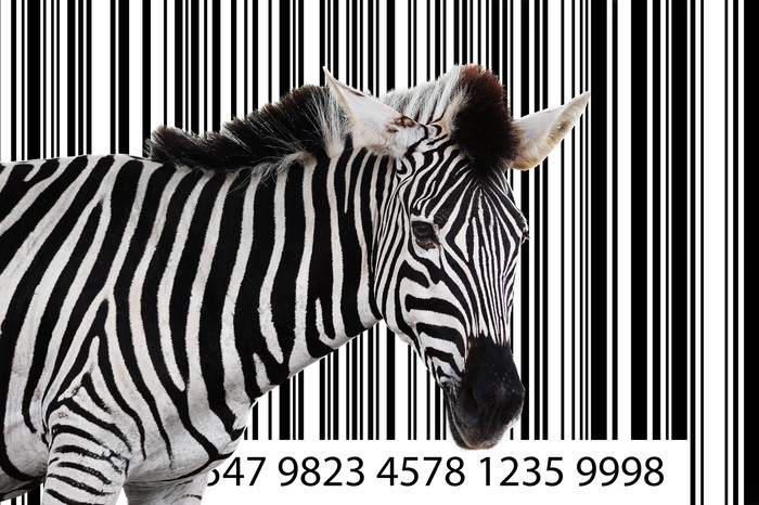A zebra stands in front of a large black-and-white barcode.