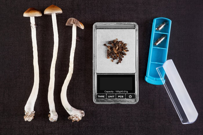 psychedelic mushrooms and lab scale being used for research
