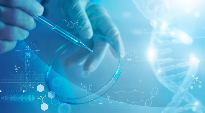 Lab testing in a Petri dish