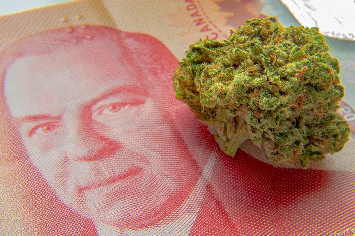 Cannabis flower on a bill of Canadian currency.