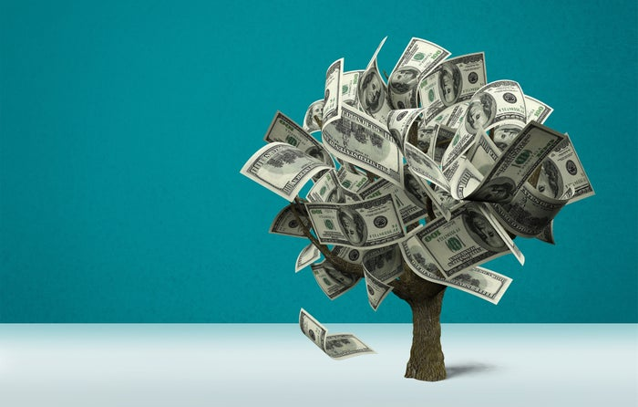 Money Tree with dollars in background.