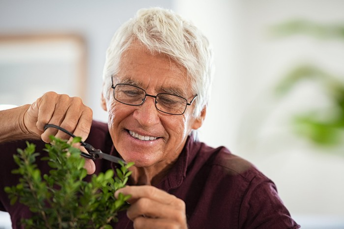 Smiling older person trimming a plant