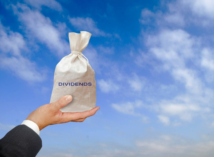 A person holding up a money bag with the word dividends on it.
