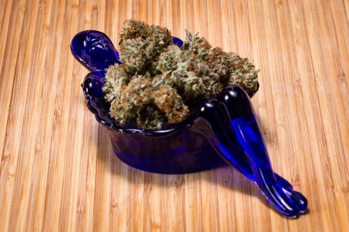marijuana flower buds in a fancy blue dish
