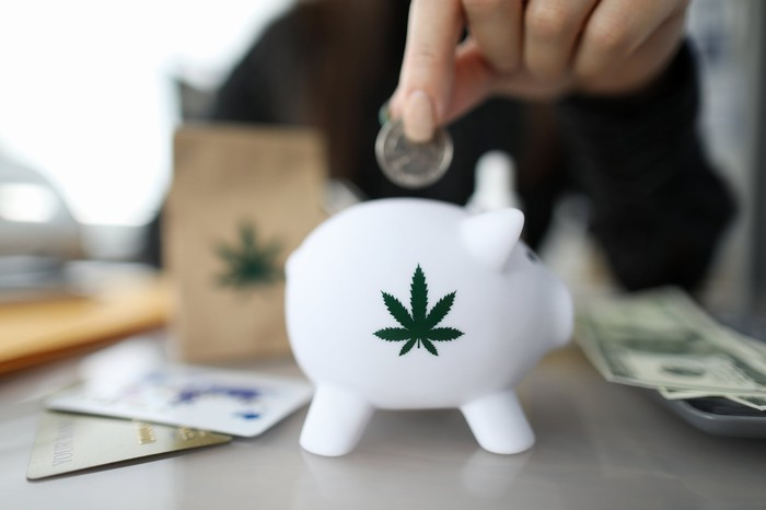 A hand drops a coin into a piggy bank with a marijuana leaf painted on its side.